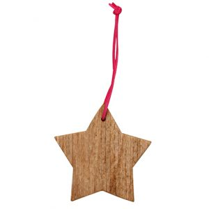 Driftwood Star Decoration
