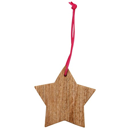 Driftwood Star Decoration