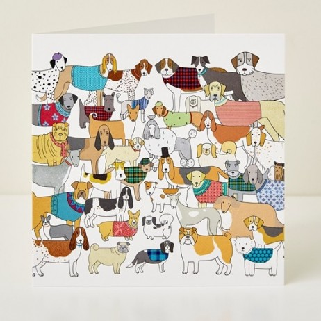 Mary Kilvert - Pack of Pooches Greeting Card