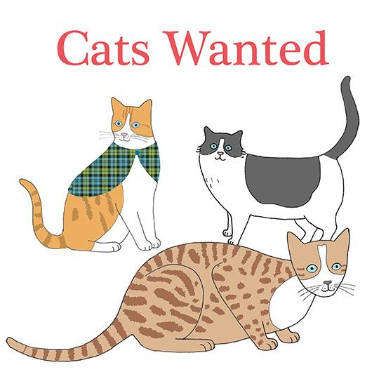 Cats Wanted - Mary Kilvert