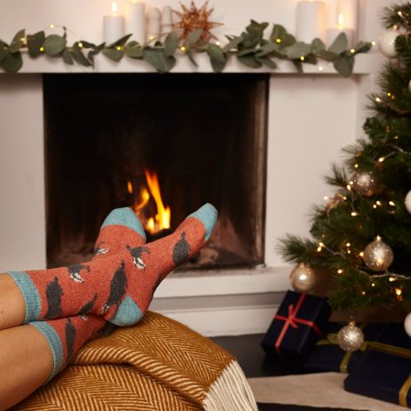 Lambswool Rusty Badger Ankle Socks